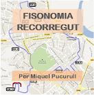 Fisonomia circuit