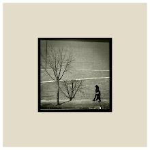 Album Arquitecturas