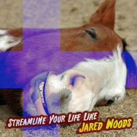 Streamline Your Life Like Jared Woods: The End (Finnish)