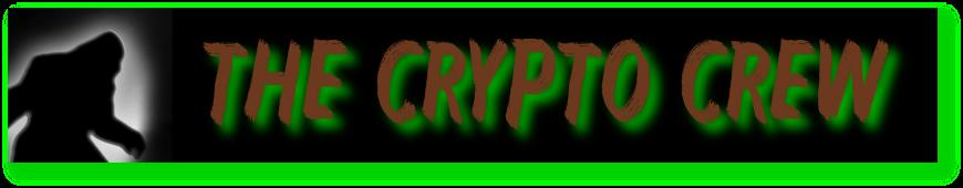 The Crypto Crew
