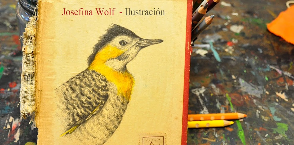 Josefina Wolf Ilustración