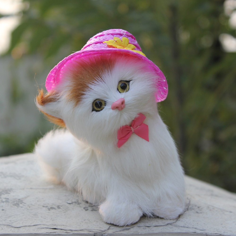 Wonderful Cute Dog N Cat Wallpapers - real-cat-pictures-hd  Photograph_712215 .jpg