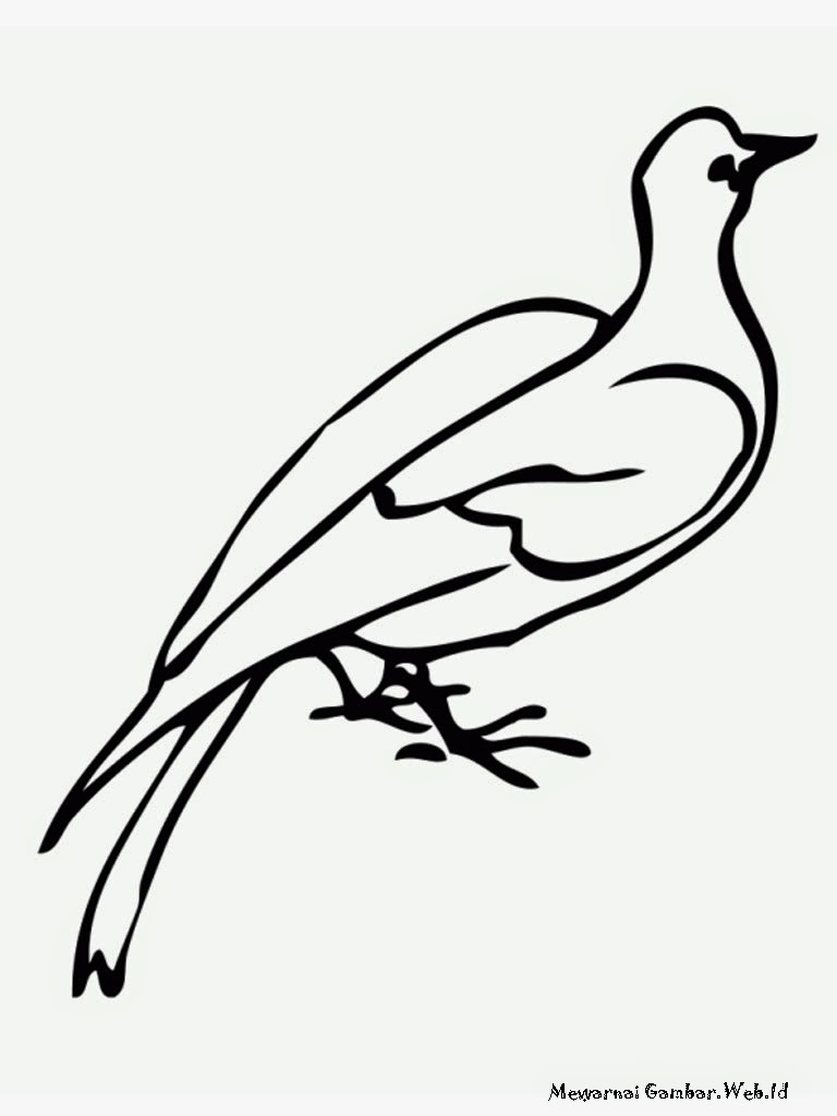 Gambar Burung Merpati Untuk Diwarnai Anak TK