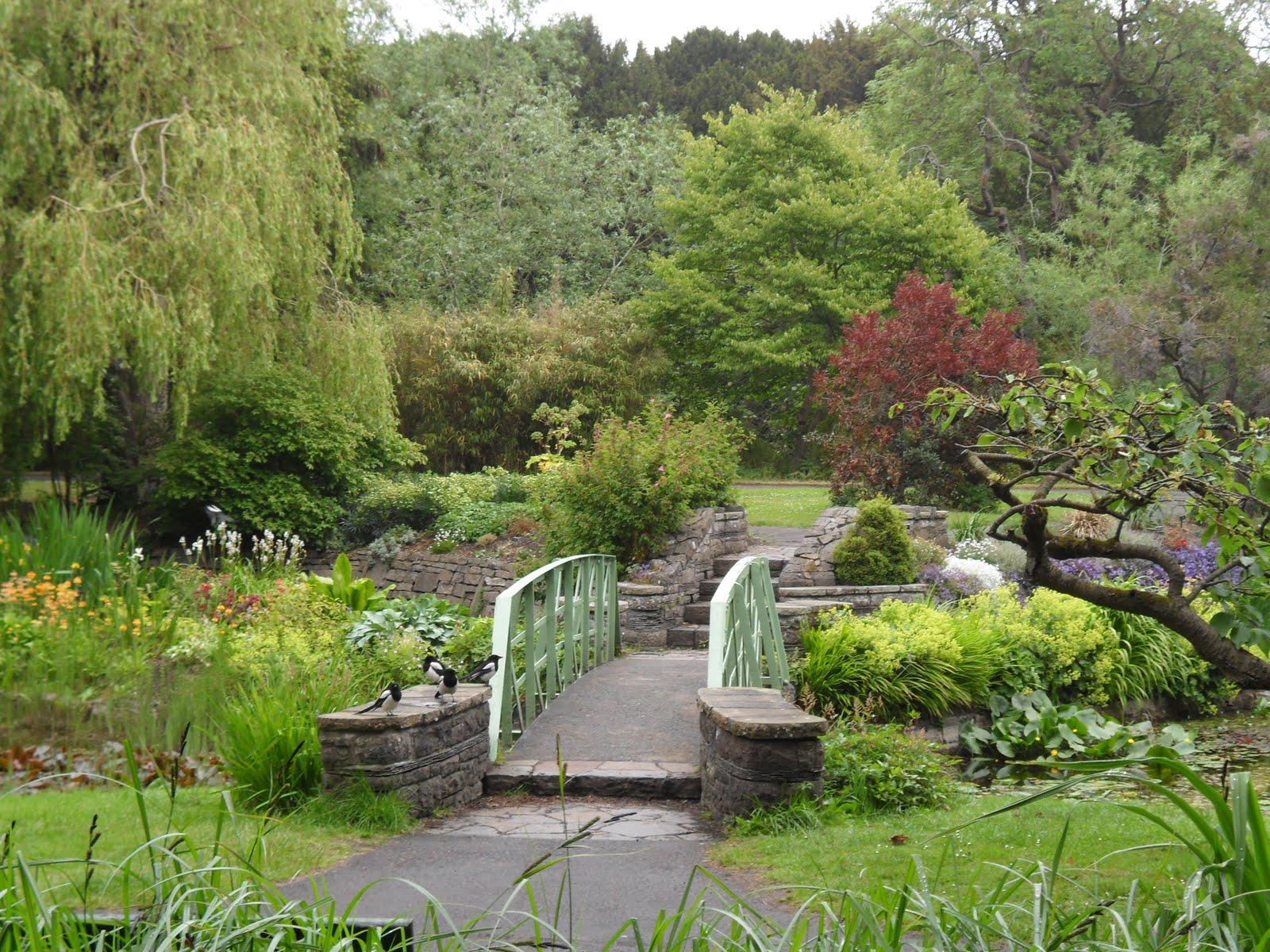 National botanic gardens ireland adventures the national for Irish garden designs