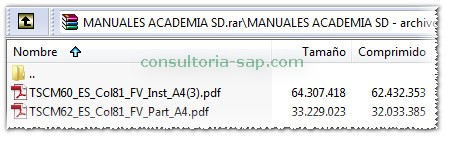 Manuales SAP SD