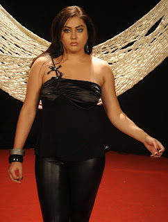 Telugu Tamil Actress Namitha latest HQ new hot pictures