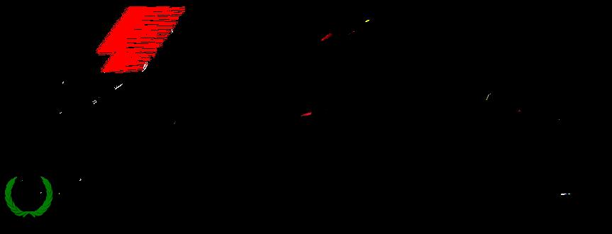 Sebastian Vettel Fan