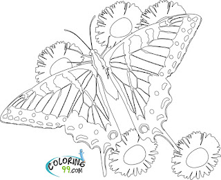free butterfly and flower coloring pages to print