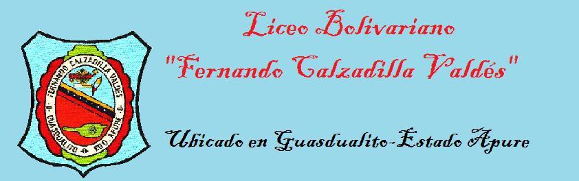 """L.B. """"Fernando Calzadilla Valdés"""", ubicado en Guasdualito.Estado Apure-Venezuela"""