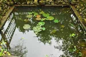 Sumur Pemandian Putri Junjung Buih