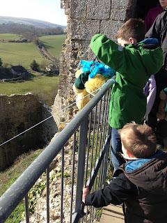 Teddy Zip Wire - Corfe Castle