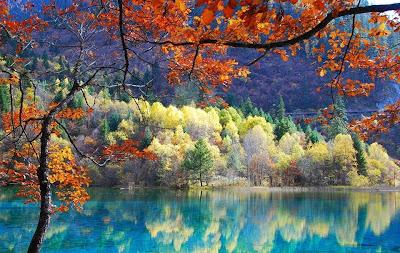 Natureza abençoada!