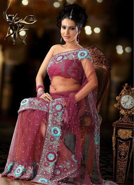 Indian Bridal Wedding Saree 2012