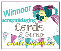 Winnaar scrapuitdaging 11 Cards and scrap