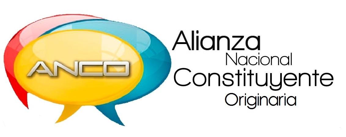 Alianza Nacional Constituyente