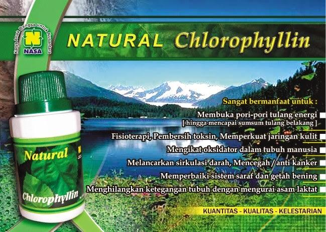natural-chlorophyl-nasa
