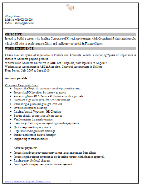 accounting skills resume
