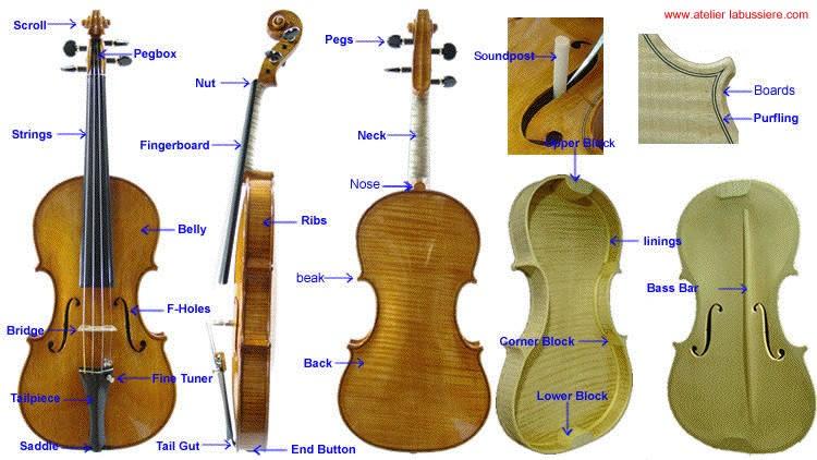 Suzuki Violin El Paso
