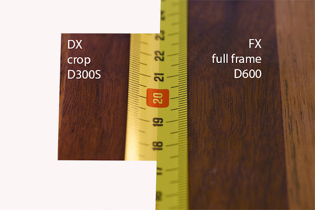 depth of field on full frame versus crop camera