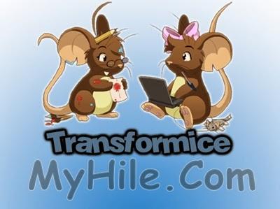 TFM Hile 2014
