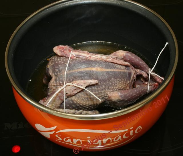 paloma torcaz en salsa la cocina paso a paso