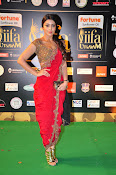 Shriya Sizzling in saree at IIFA Utsavam-thumbnail-15