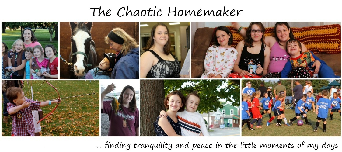 The Chaotic Homemaker