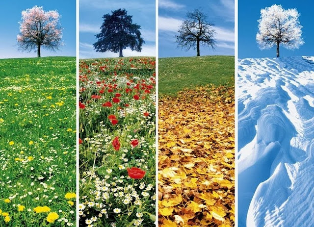 stagioni