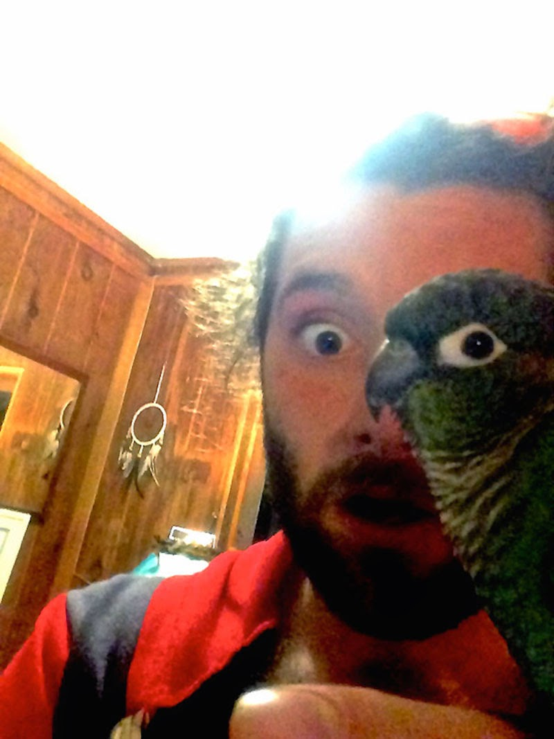 30 Pictures Taken At The Right Moment - Instead of an eye patch, this pirate just relies on his pet parrot.