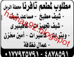 وظائف خالية بمحافظة الأسكندرية