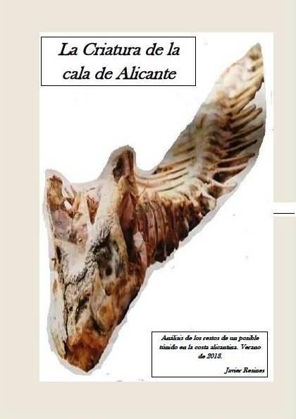 La Criatura de la cala de Alicante