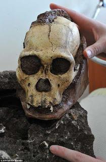 Cráneo 2 millones de años