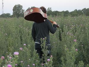 Mi vida entre tus flores