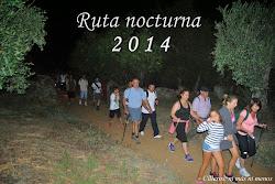 RUTA NOCTURNA 2014