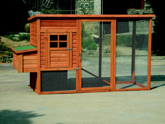 Chicken and duck coop plans build your own chicken coop for Build your own duck house