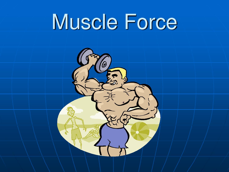 Health-Sport-Fitness-Bodybuilding: Muscular strength