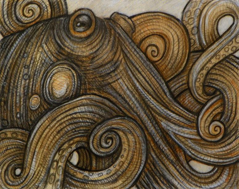 Latest Artwork The Cephalopod
