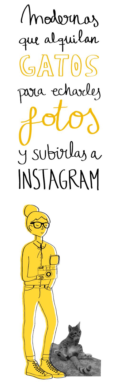 modernas gatos instagram