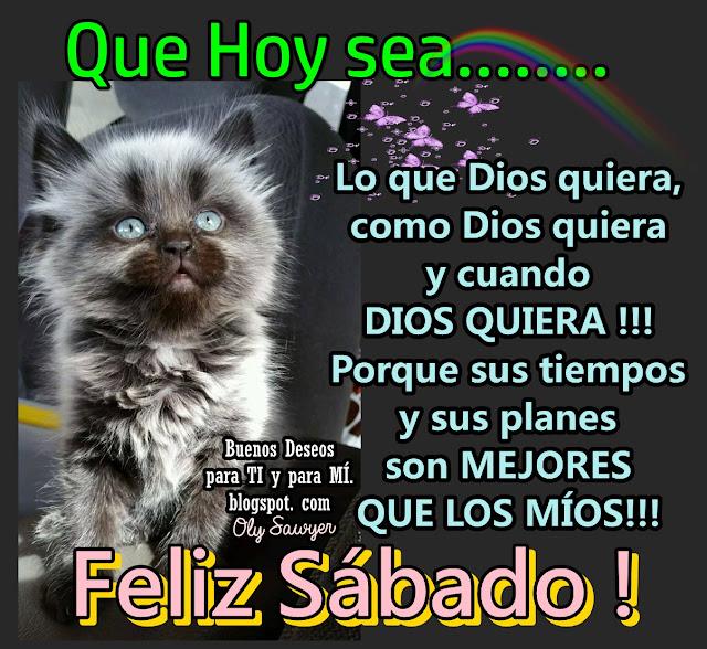 QUE HOY SEA... lo que Dios quiera, como Dios quiera y cuando DIOS QUIERA!!! Porque sus tiempos y sus planes son MEJORES QUE LOS MÍOS!  FELIZ SÁBADO!