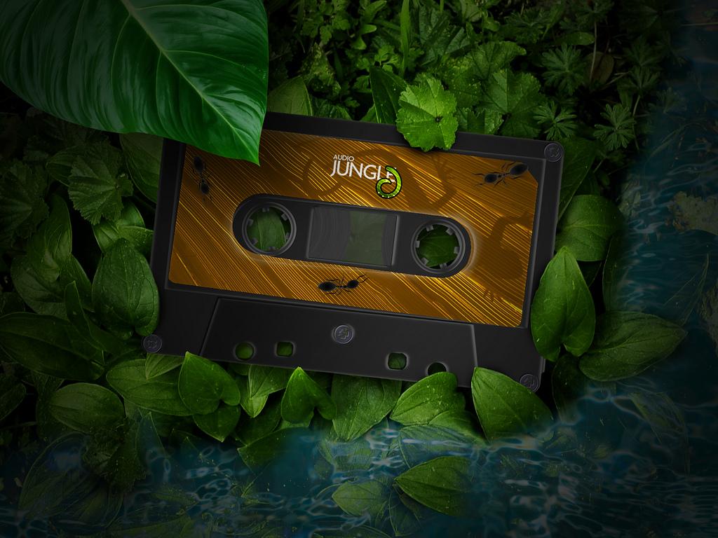 http://3.bp.blogspot.com/-SGqS91wFY4w/T18795VlGbI/AAAAAAAAAP4/O94_CUPY0TY/s1600/Audiojungle+Compact+Cassette+1024X768+3D+Wallpaper.jpg