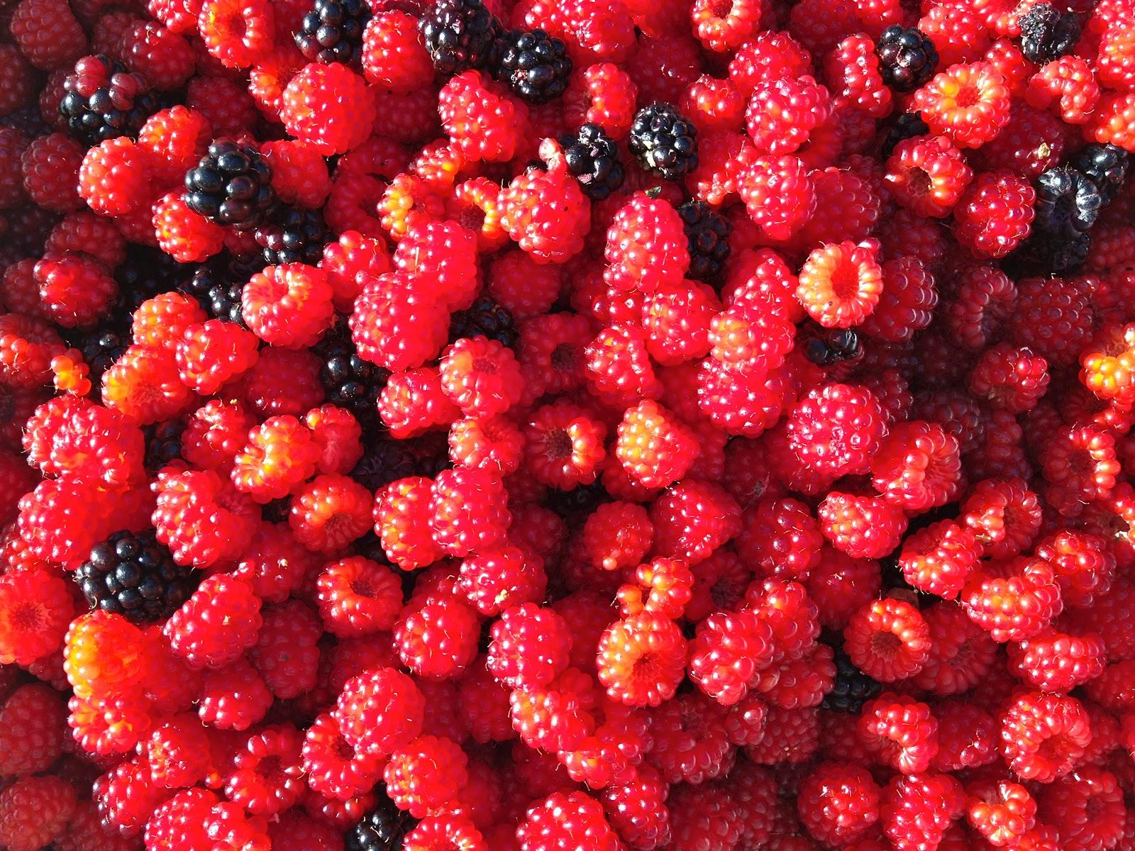 how to make raspberry jam with sugar