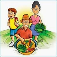 trabalhador rural, segurado especial, aposentadoria por idade