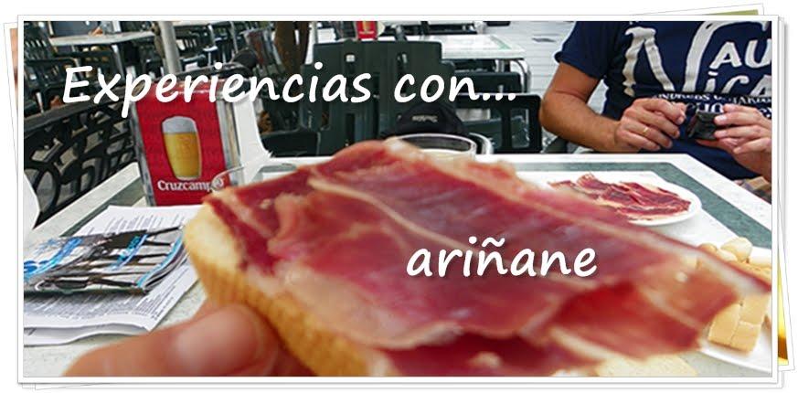 Experiencias con Ariñane