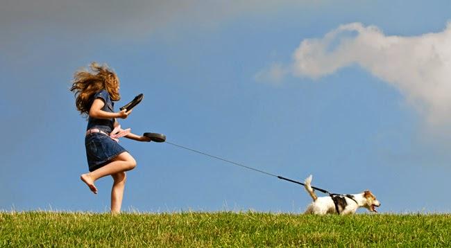 Jak wyprowadzać psa na smyczy?