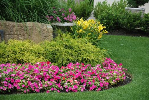 Rc country hobbies for Free perennial flower garden designs