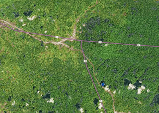 compare satellite view from google, bing, here (ovi) quality