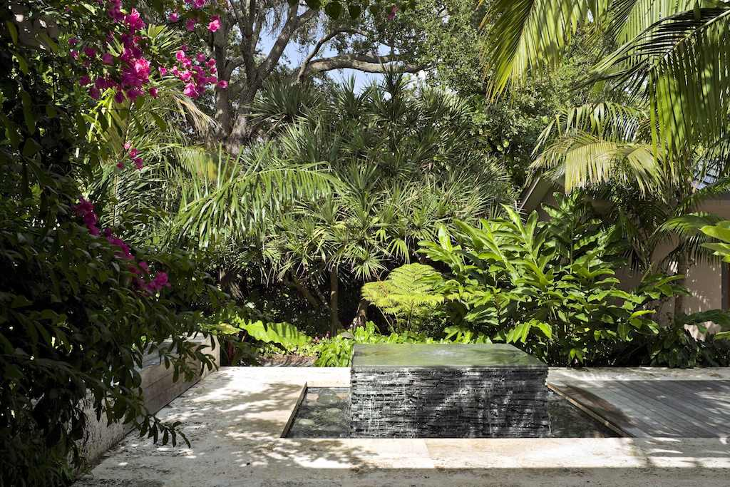 Tropical garden and landscape design modern design by for Jungle garden design ideas