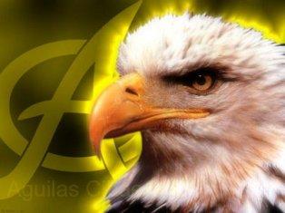 """fundación de reciclaje """"Las águilas"""""""
