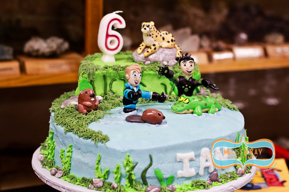 Wild Kratts Cake Decorations