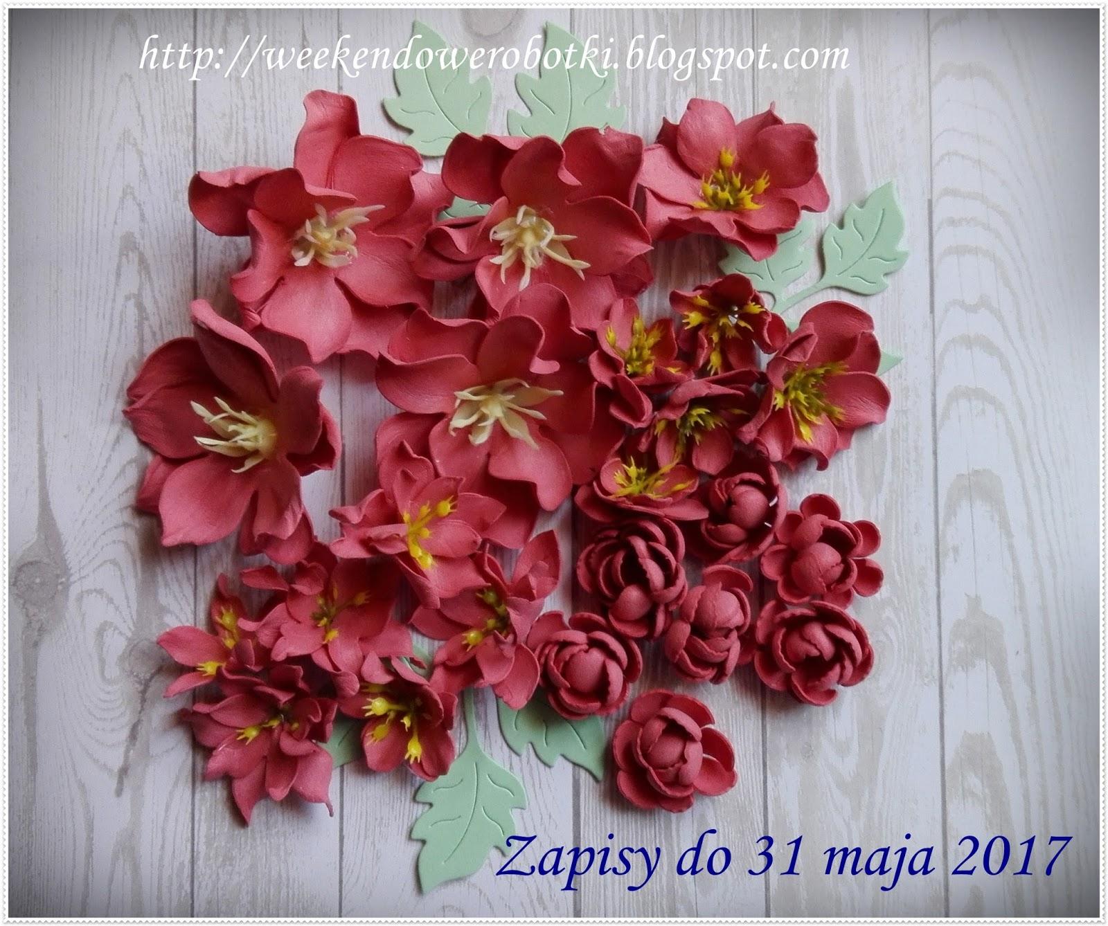 Kwiaty u Marylki